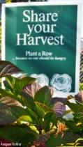 """Share your Harvest"", Portland"