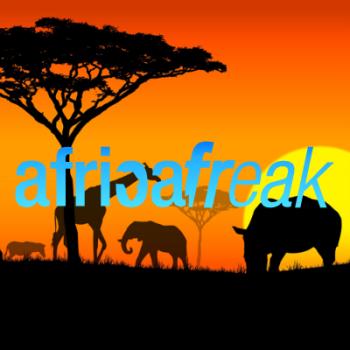 Africa Freak