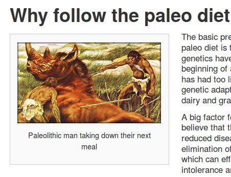 paleo-website-screenshot