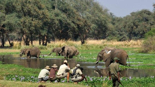 africa-ecotourism